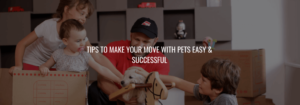 Tips To Make Your Move With Pets Easy & Successful
